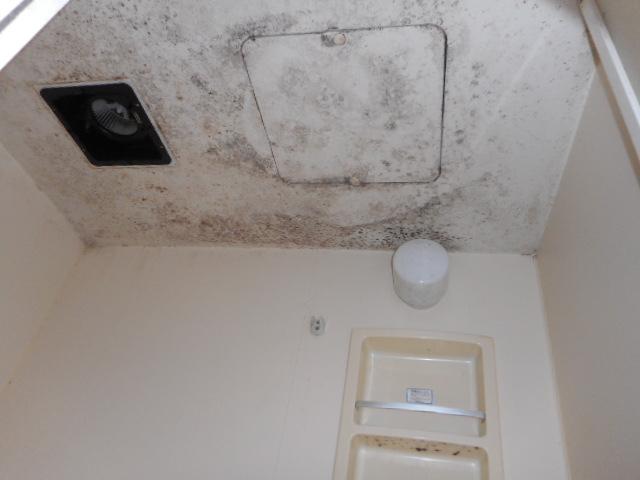 ユニットバスの浴槽・天井塗装しました。