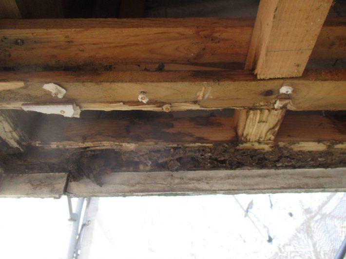 シロアリ被害に遭い下地の木部が腐っている為、このままでは外壁サイデング浮きを補修することが出来ません。